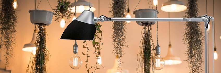 Lampe et Luminaire