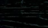 Chêne laqué noir - Finition bois