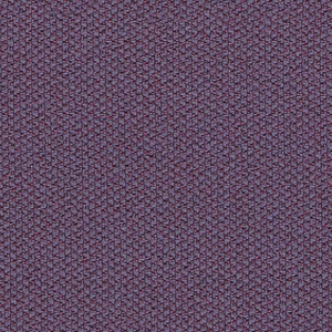 C09-Violet