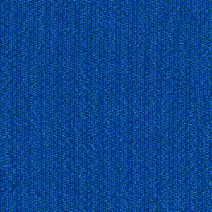 C12-Bleu marine