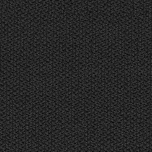 C14-Noir